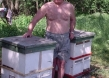 Pjotr Kudin mit seinen Bienenstöcken